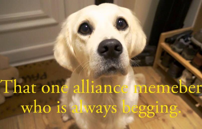 The alliance member everyone ignores